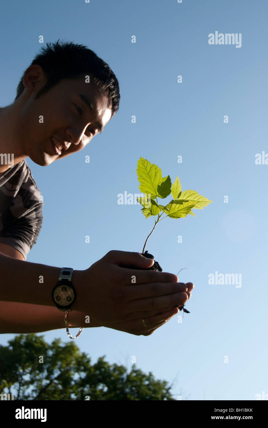 Young man holds seedling, Assiniboine Park, Winnipeg, Manitoba, Canada - Stock Image