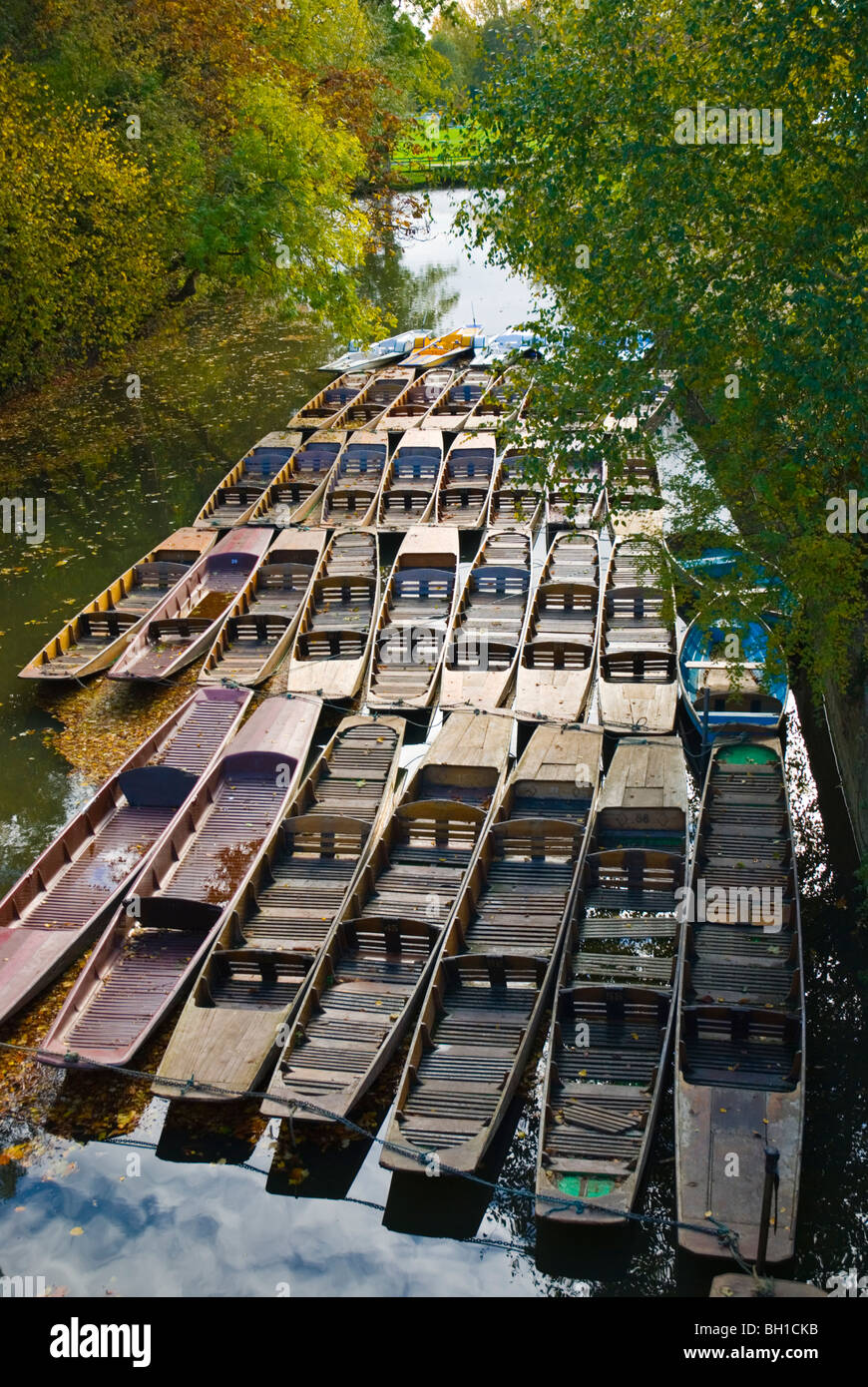 Chaffeured punts at Cherwell canal Oxford England UK Europe - Stock Image