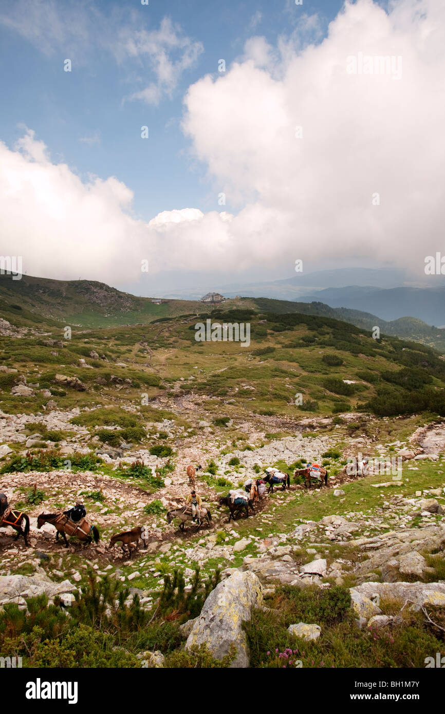 Horse train in the mountains 7 lakes  Rila Bulgaria - Stock Image