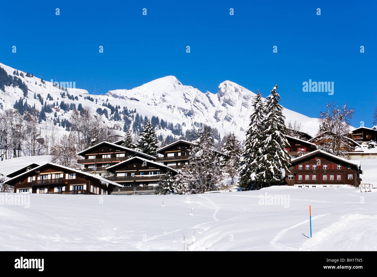 Alpine houses with mountains Schwarzhorn and Gemschberg in background, First, Grindelwald, Bernese Oberland, Canton - Stock Image