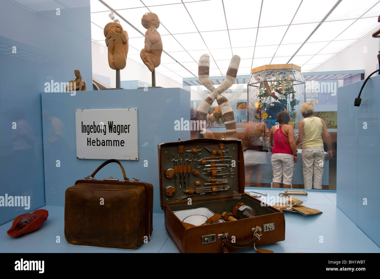 Das Deutsche Hygiene Museum, DHMD, Room 2 Living and Dying, Dresden, Saxony, Germany, Europe - Stock Image