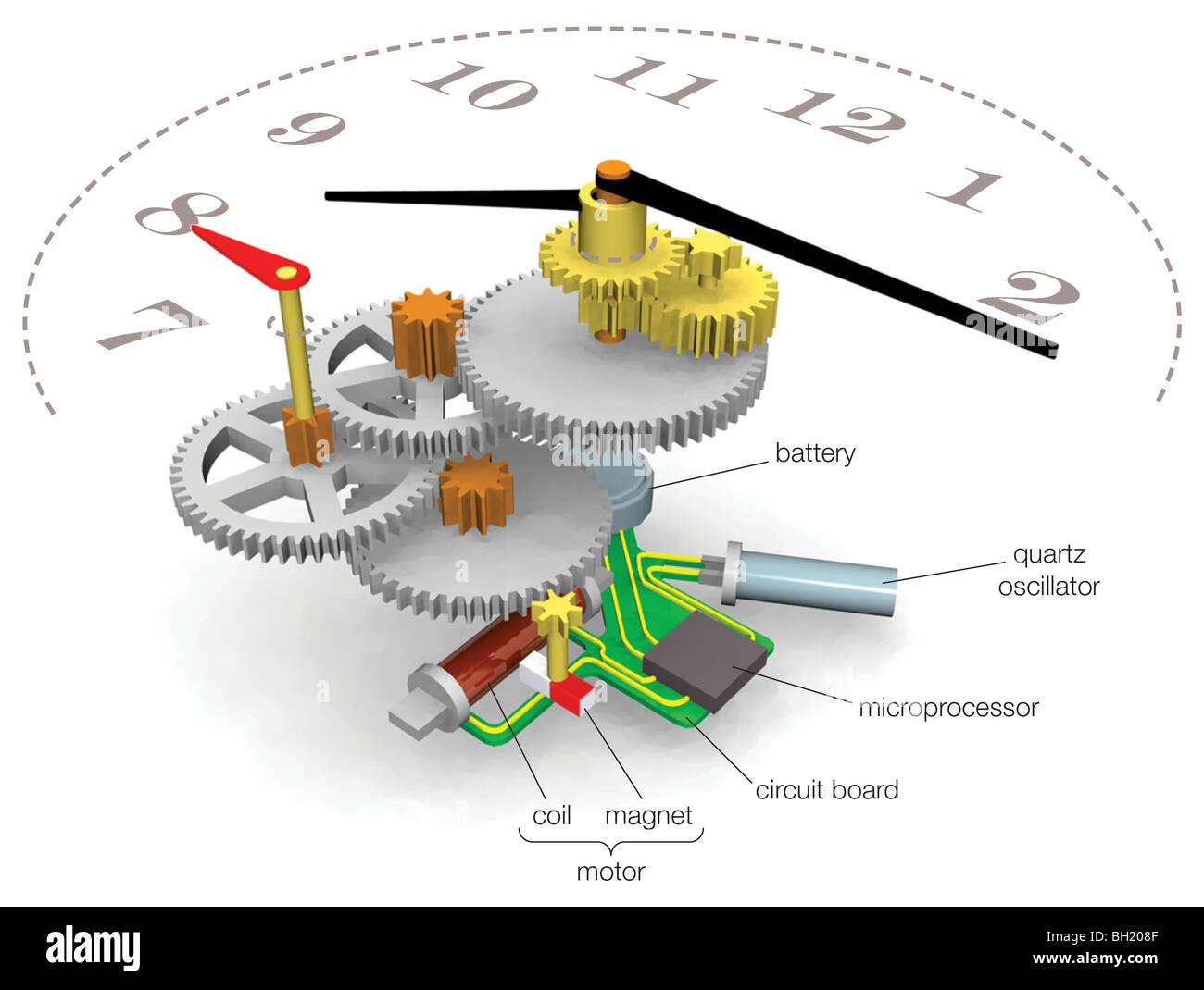 quartz watch - stock image