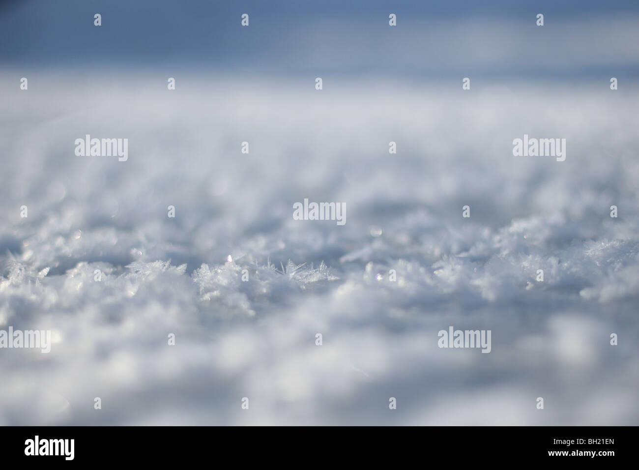A close up of ice crystals on the surface of a creek. - Stock Image