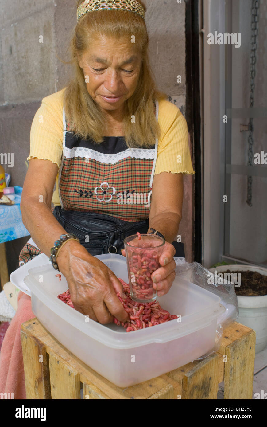 Marcela Sandoval Vertiz, 74, sells edible maguey cactus worms outside the San Juan Market in downtown Mexico City. - Stock Image