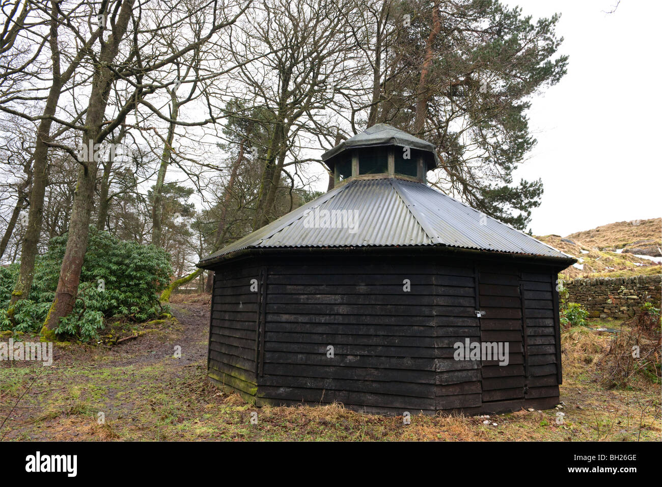 Hexagonal wooden and corrugated roofed woodland vented shed - Stock Image