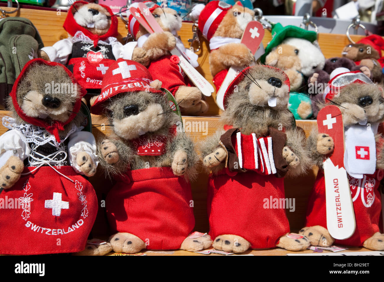 MARMOTS, STUFFED ANIMALS, COSTUMED AS SWISS, DAVOS, GRISONS, SWITZERLAND - Stock Image
