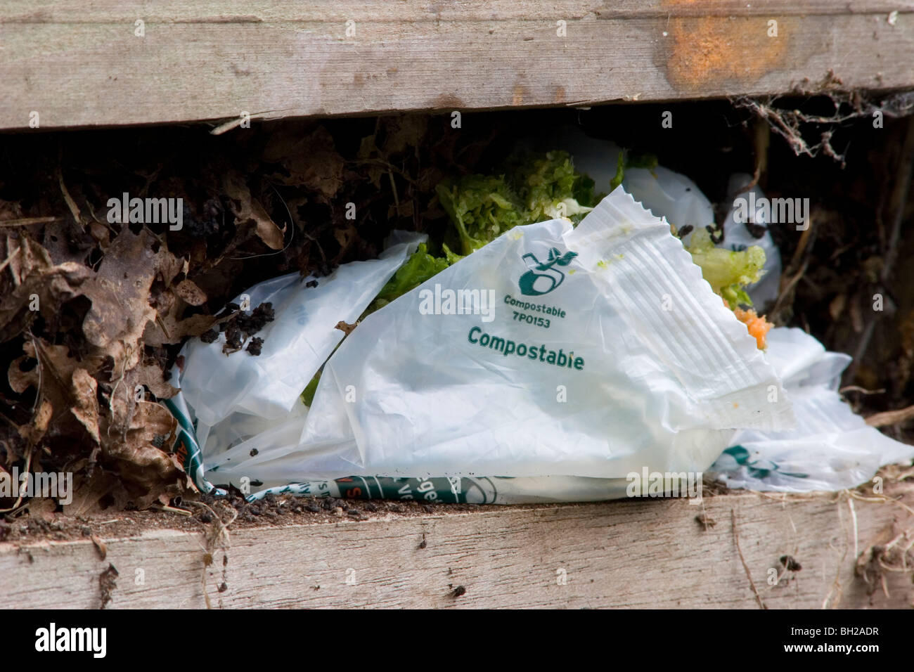 compostable plastic bag in compost heap - Stock Image