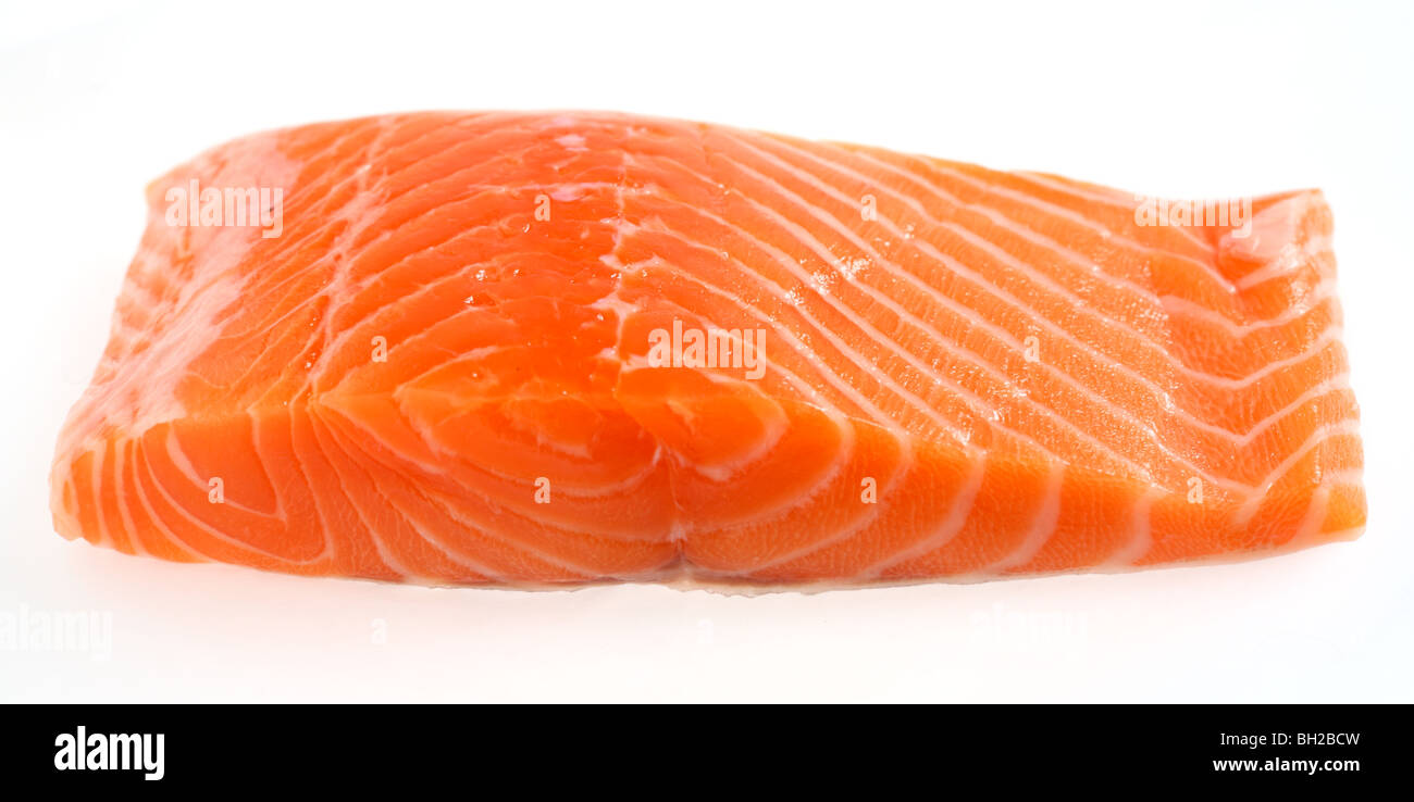 A piece of salmon fillet over a white background - Stock Image