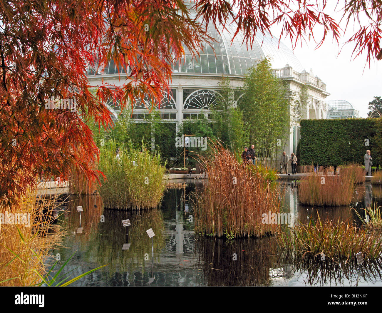Autumn at the New York Botanical Garden Stock Photo: 27720435 - Alamy