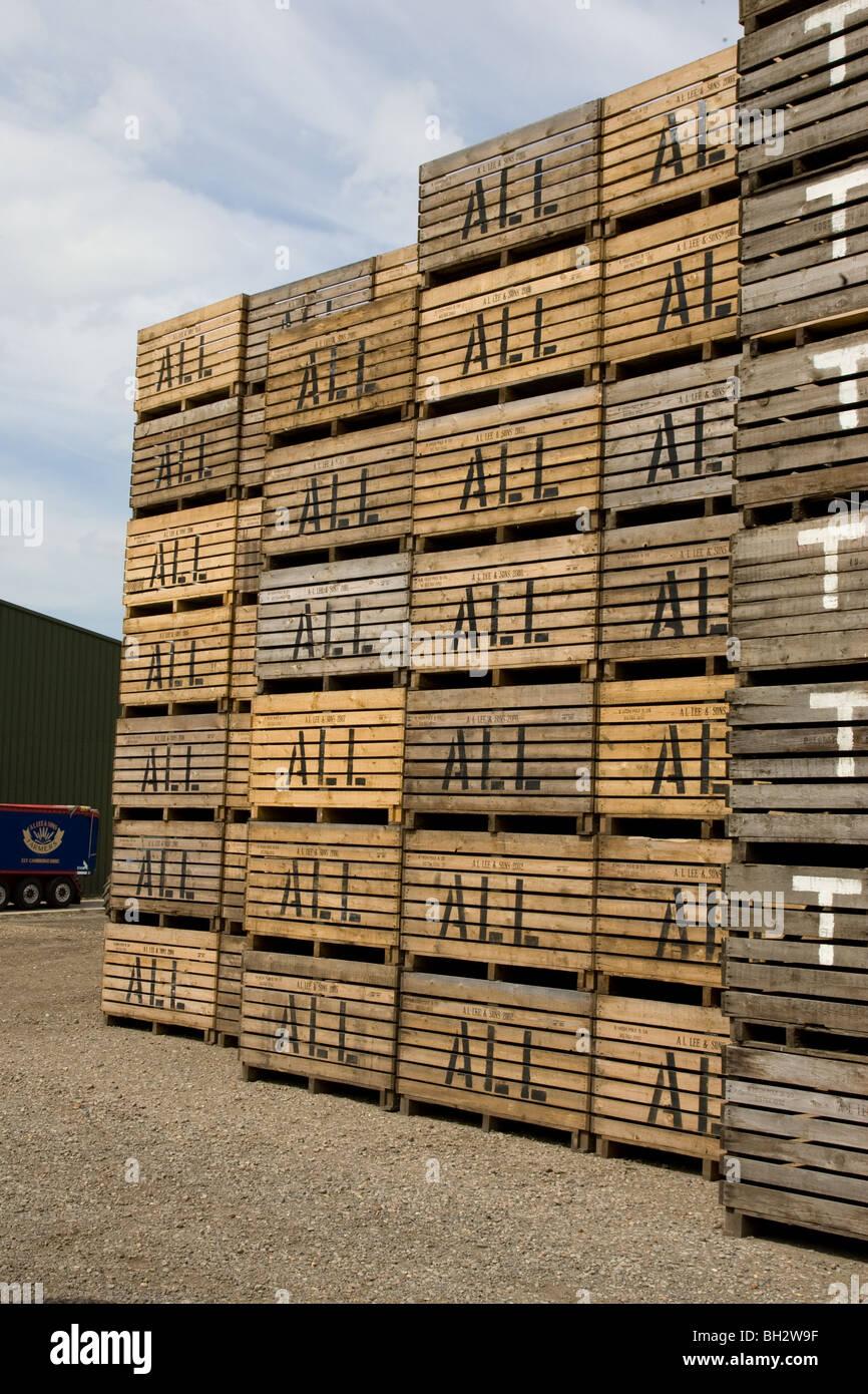 Potato Storage Boxes In A Farmyard   Stock Image