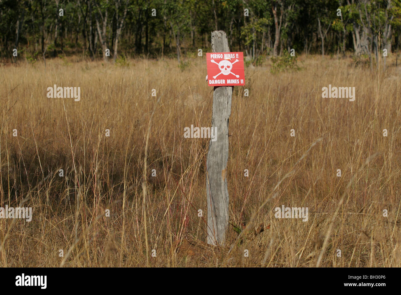 Sign that reads 'Danger mines / Perigo Minas' between Cassinga and Jamba,  Angola, Africa. The country is - Stock Image