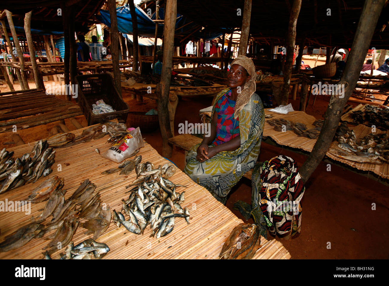 Dried fish sold at a street market between Gabela and Sumbe, Angola, Africa. - Stock Image