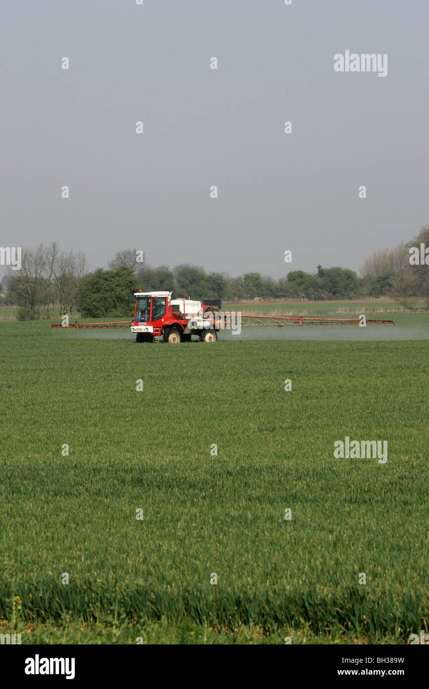 Crop Sprayer Working In Lincolnshire - Stock Image
