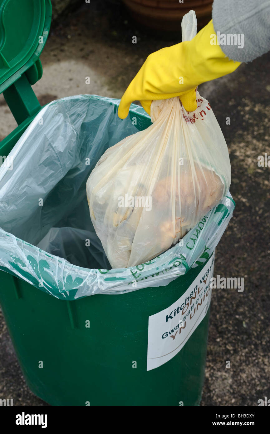Adding Food Scraps and Peelings to Kitchen Recycling Bin Stock Photo ...