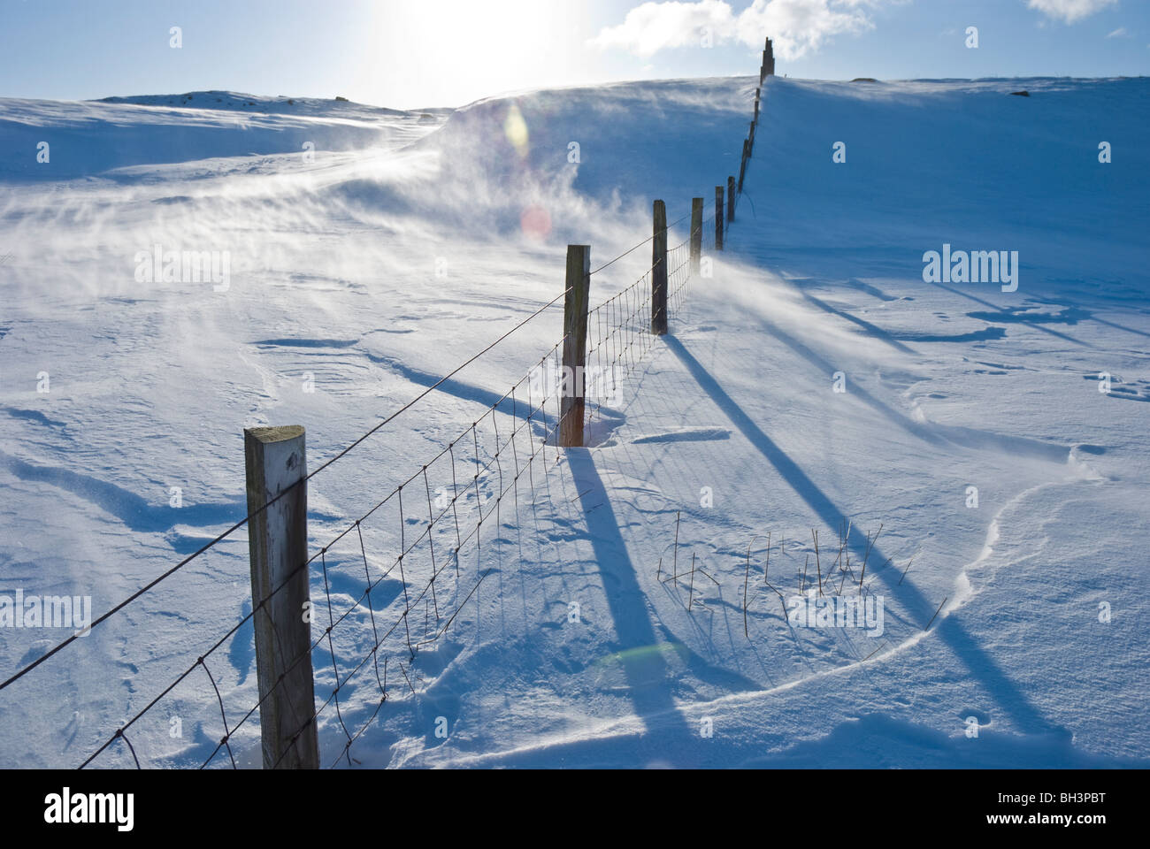 Crossing Fence Stock Photos & Crossing Fence Stock Images - Alamy