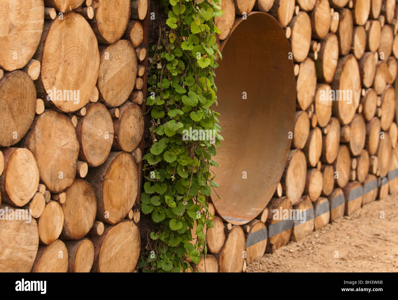 Part of the Narratives of Nature Garden designed by Hugo Bugg and ...