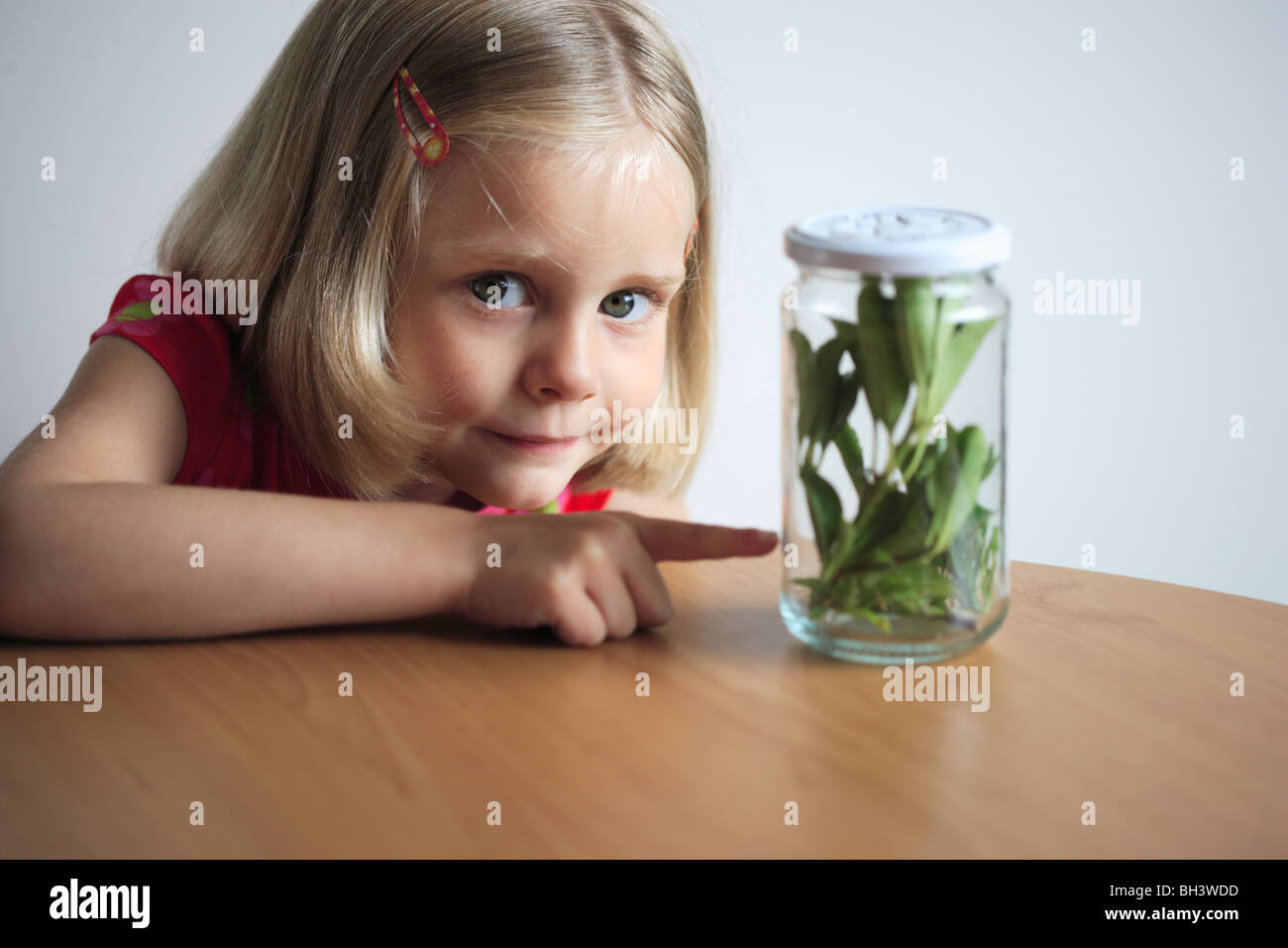 Young girl pointing to a jar filled with leaves and insects, smiling - Stock Image