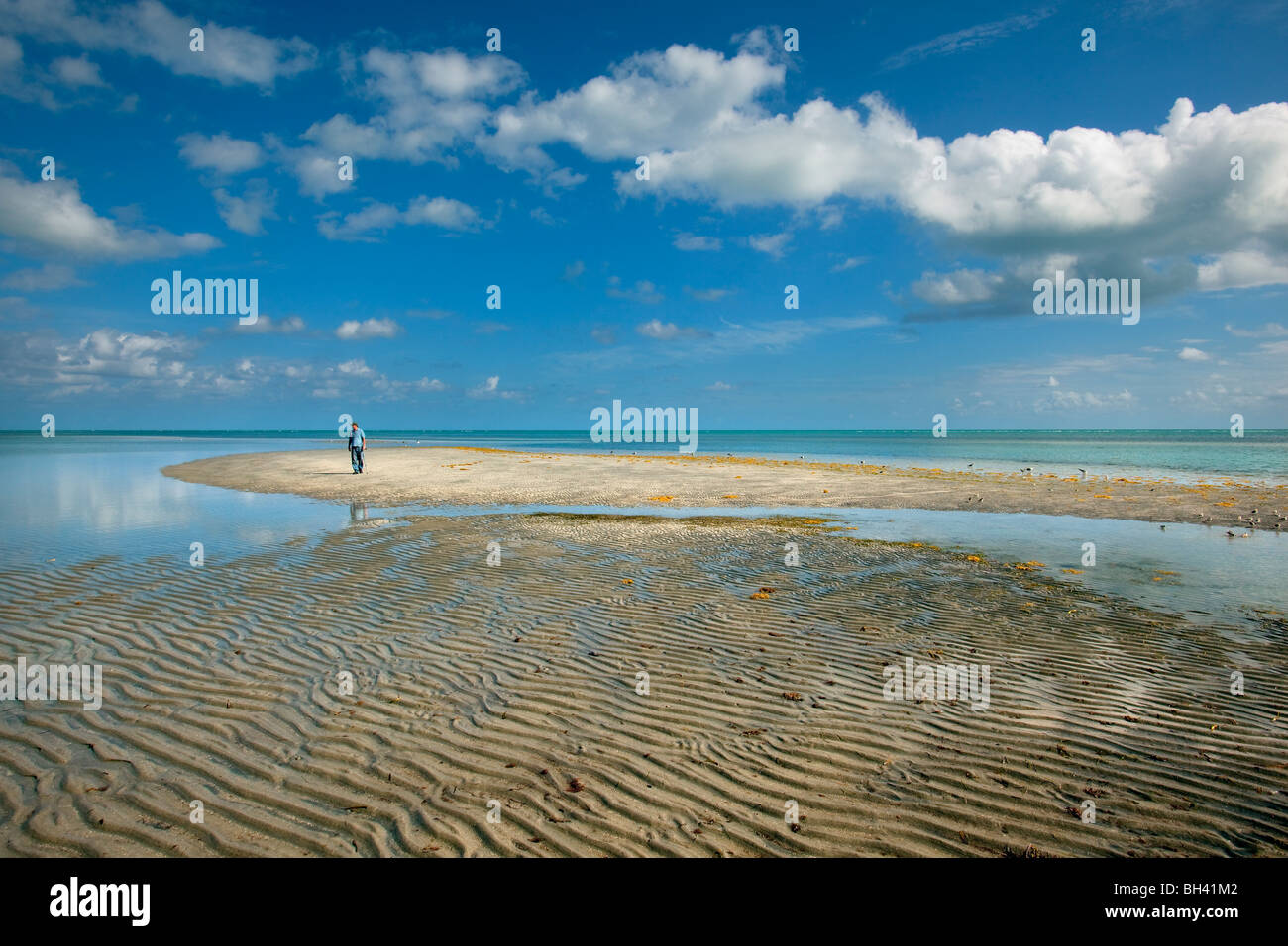 Rippled Sand, Low Tide, Key Biscayne, Florida - Stock Image