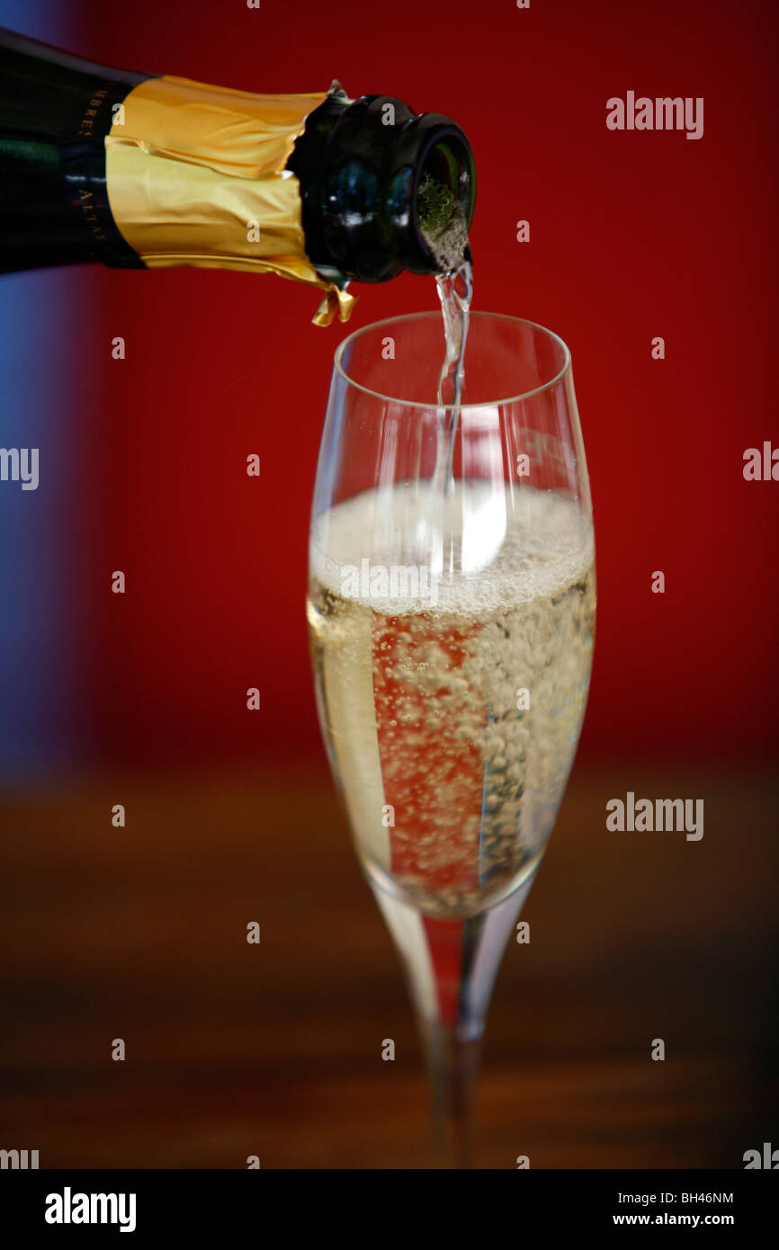 Champagne bottle and glass, Mendoza, Argentina. - Stock Image