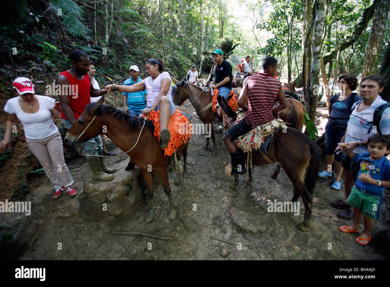 Guided horse tours to El Limon waterfall, Samana peninsula, Dominican Republic - Stock Image