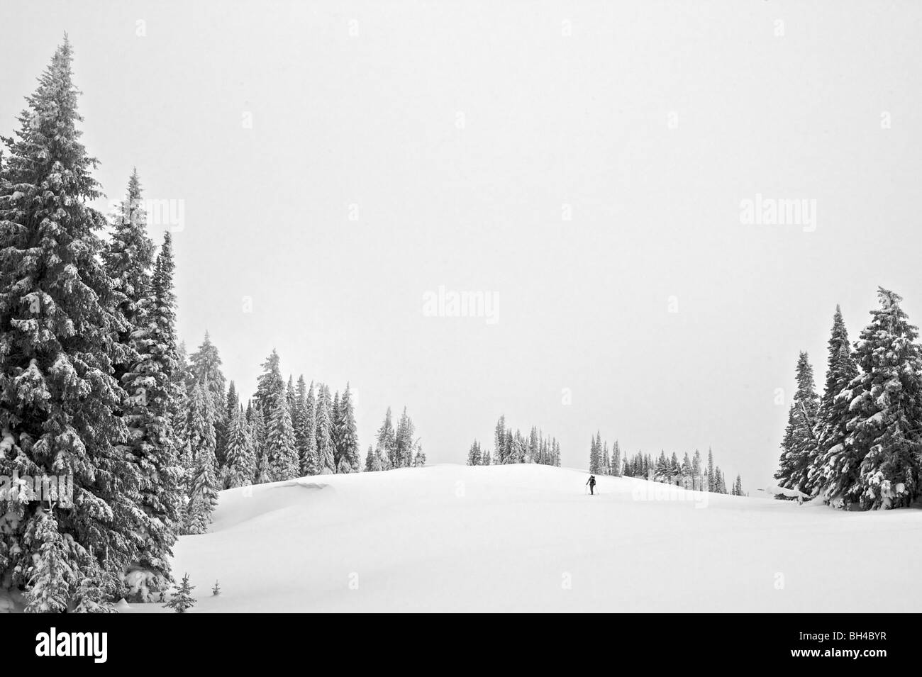 A man ski-tours through a field surrounded by trees in the Eastern Idaho backcountry. - Stock Image