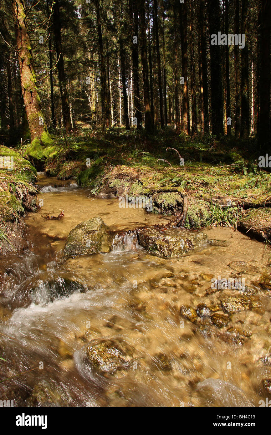 A fast flowing stream running through woodland. - Stock Image