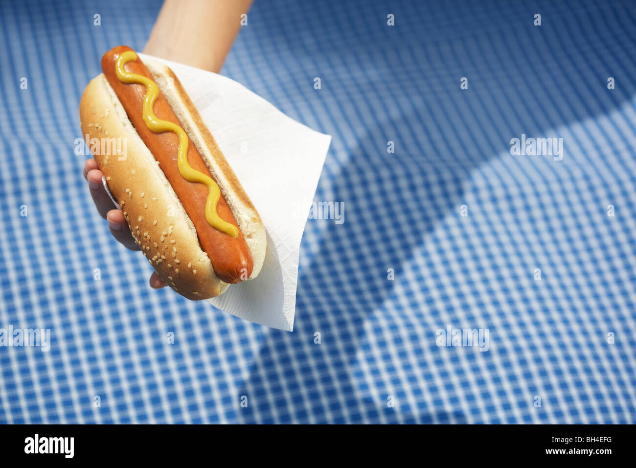Hand holding a hotdog over a picnic blanket - Stock Image