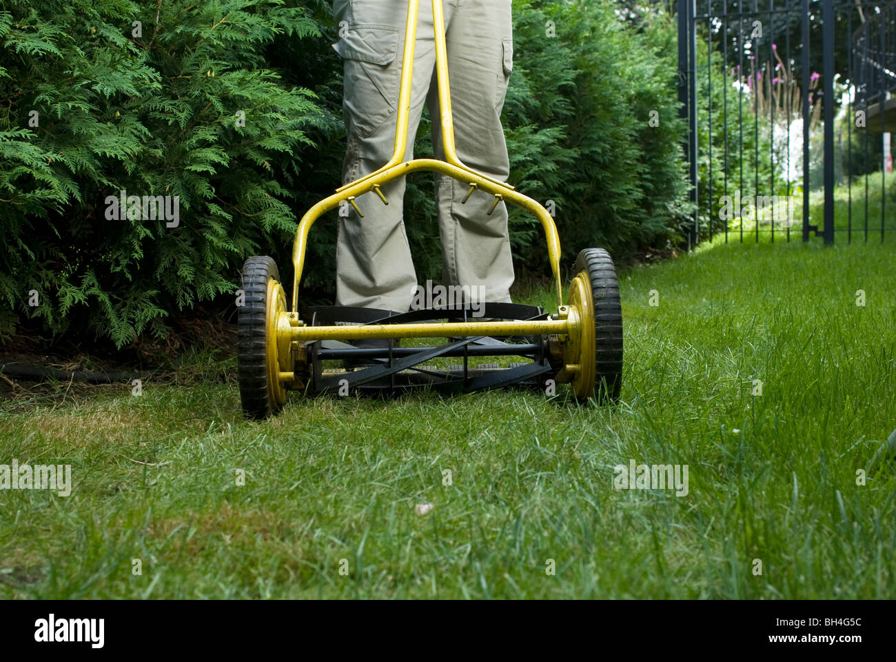 Man mowing lawn with push mower, Montreal, Quebec - Stock Image
