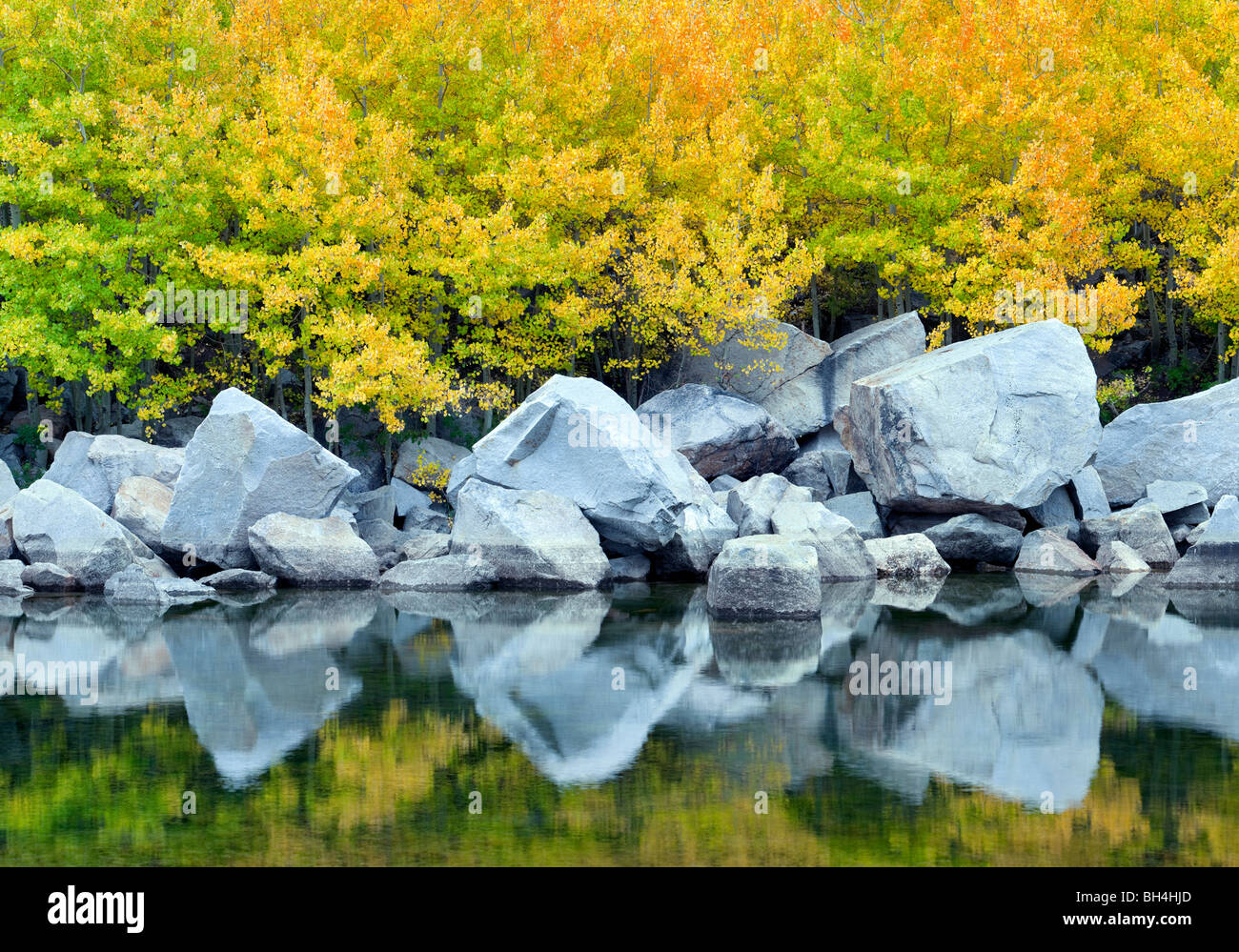 Cardinal Pond with fall colored aspens. Bishop Canyon. California - Stock Image