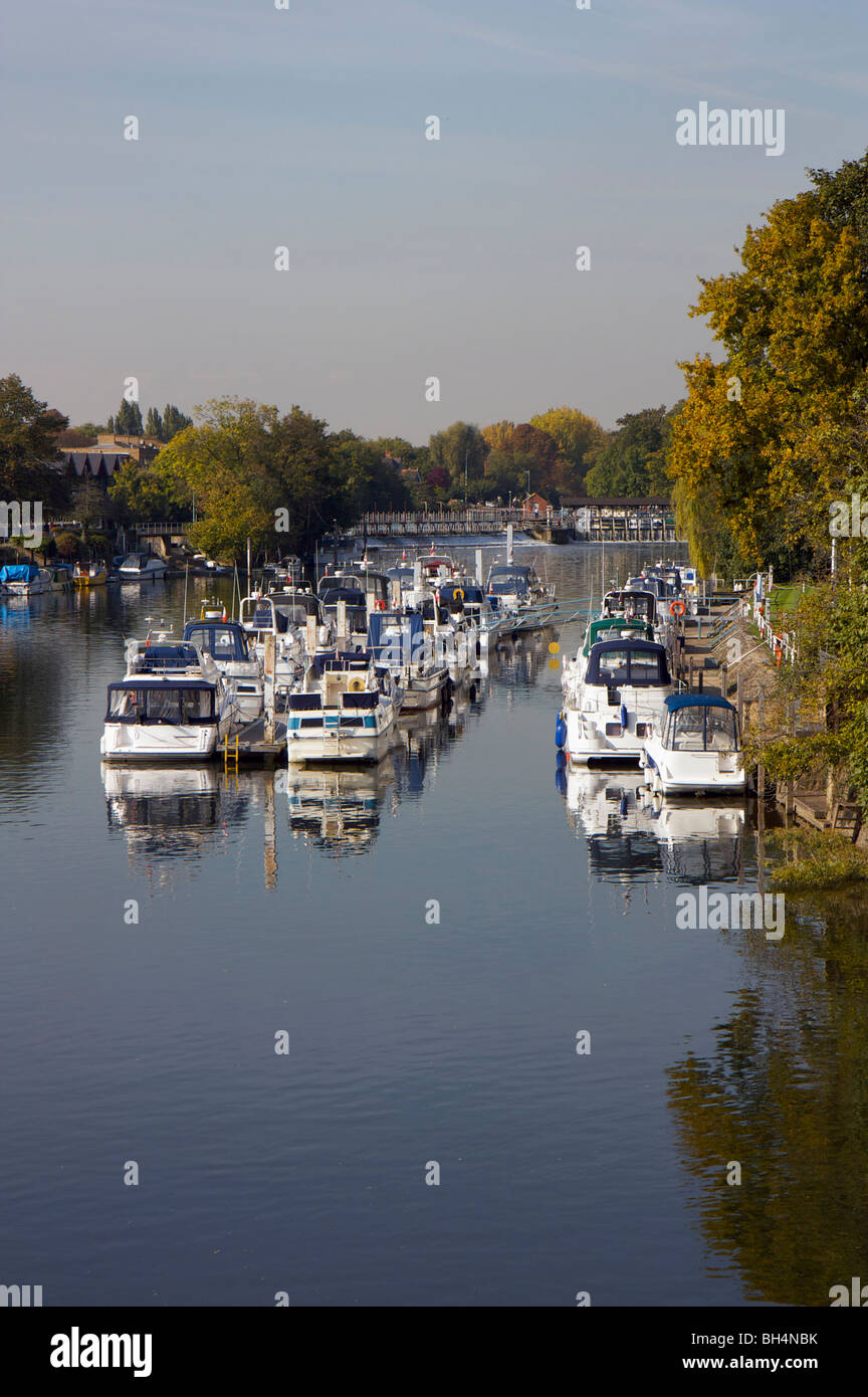 Moored boats on the River Thames at Moseley Lock near Hampton Court, Surrey, England - Stock Image