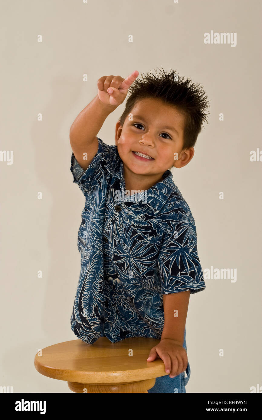 3 Year Boy Bedroom Ideas: Hawaiian Shirt Cut Out Stock Photos & Hawaiian Shirt Cut