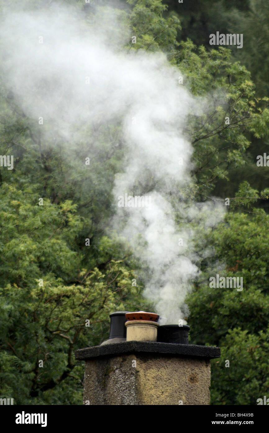 Domestic chimney emitting smoke into still air. Stock Photo