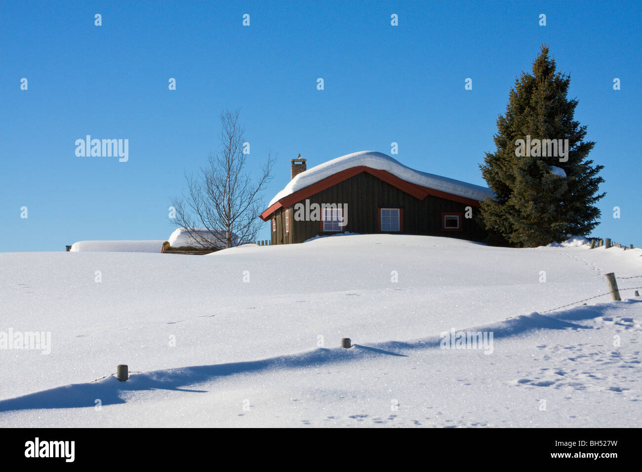 Holiday chalet with snow and conifer tree. - Stock Image