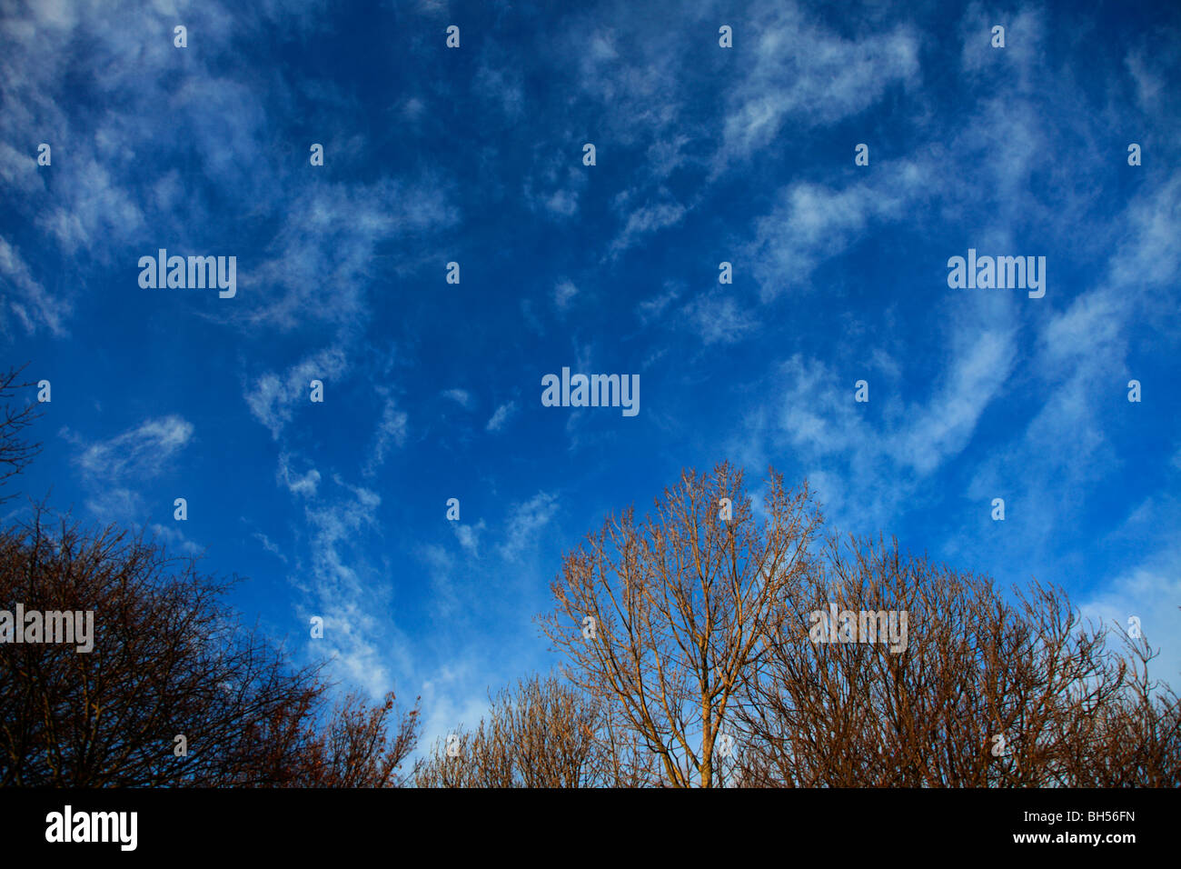 White Wispy Cirrus High clouds deep blue sky - Stock Image