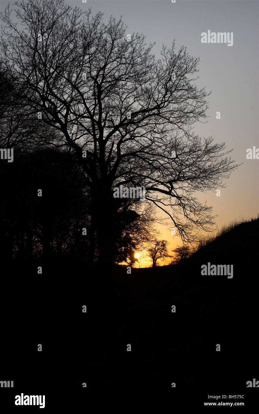 A scene from the South Downs National park at sunset. Stock Photo