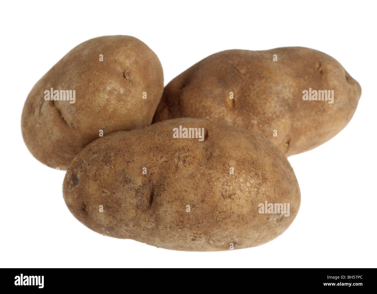 Three russet potatoes over a white background - Stock Image