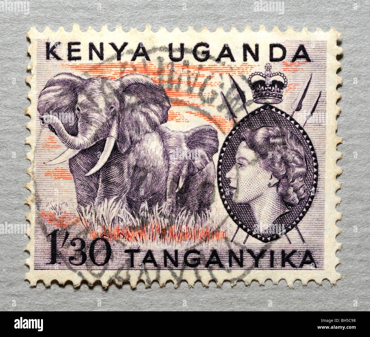 Kenya Postage Stamp. Stock Photo