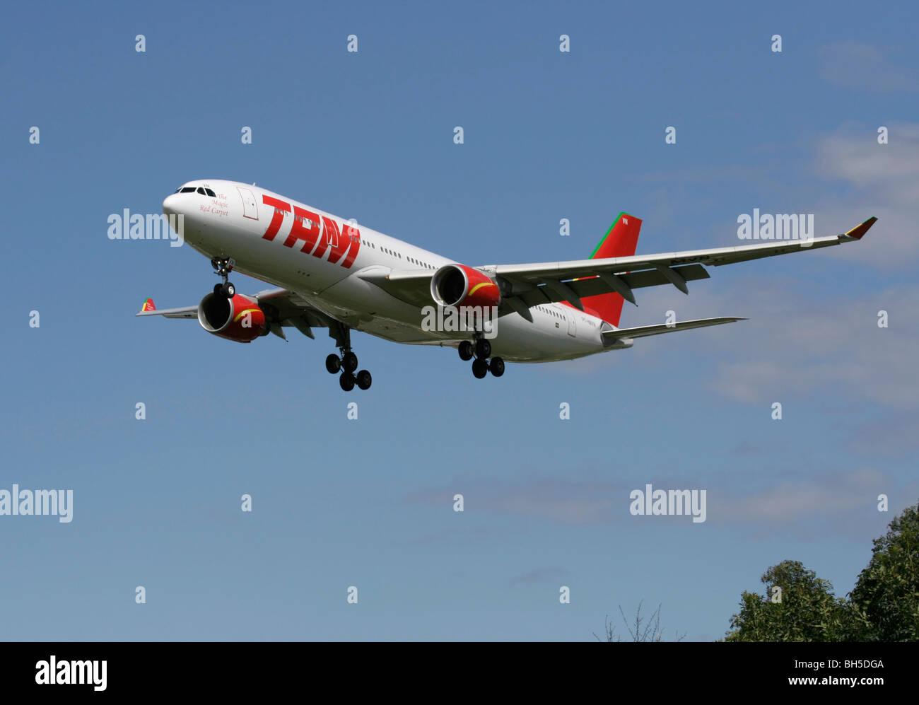 TAM Airlines Airbus A330-200 - Stock Image