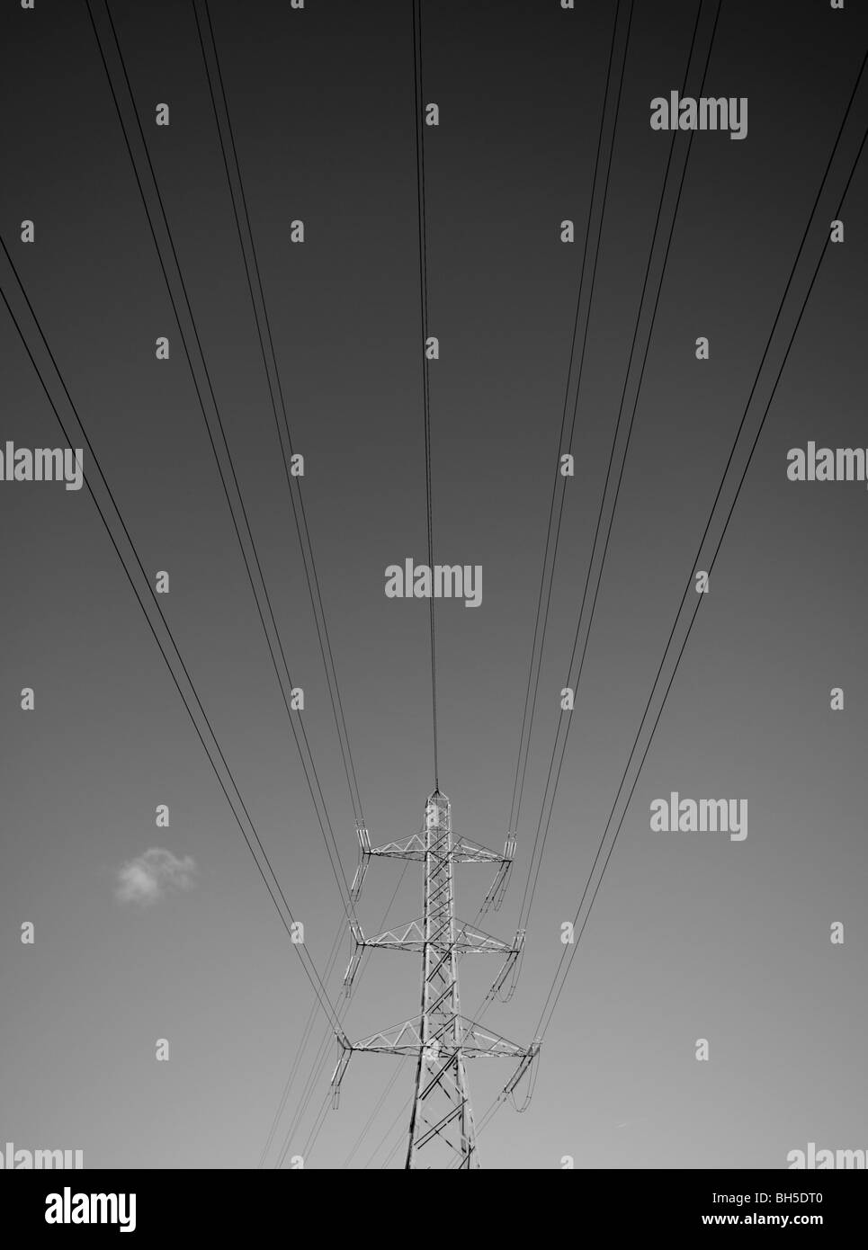 Electricity pylon, cables and sky in monotone - Stock Image