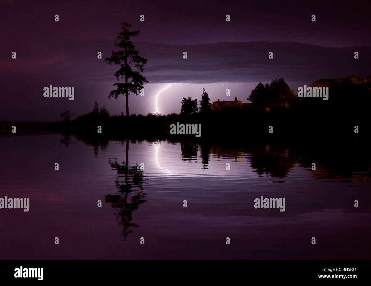 Lightning storm scene shortly after sunset creating purple hue with silhouetted fir tree reflecting in water and Stock Photo
