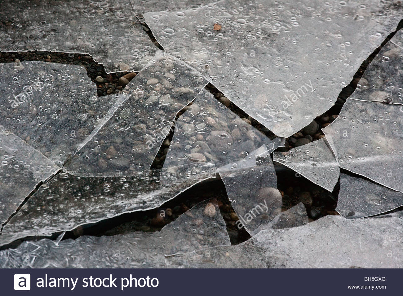 Thin ice fractures into puzzle pieces to reveal stones and shallow stream below - Stock Image
