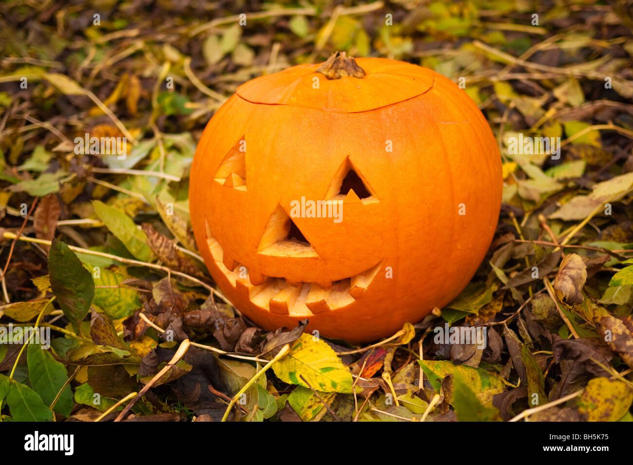 traditional halloween jack o lantern stock image
