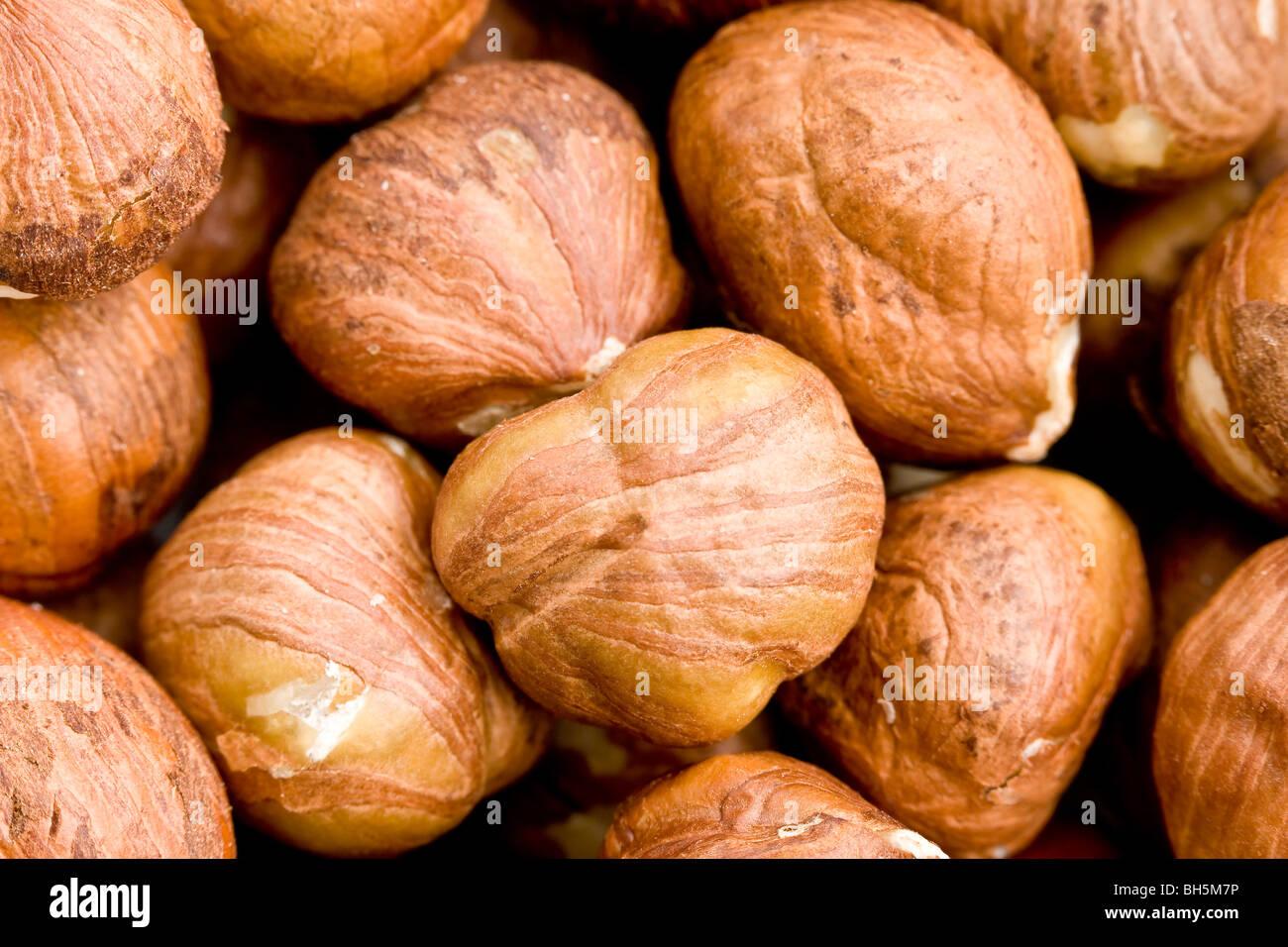Close up of hazelnut kernels - Stock Image