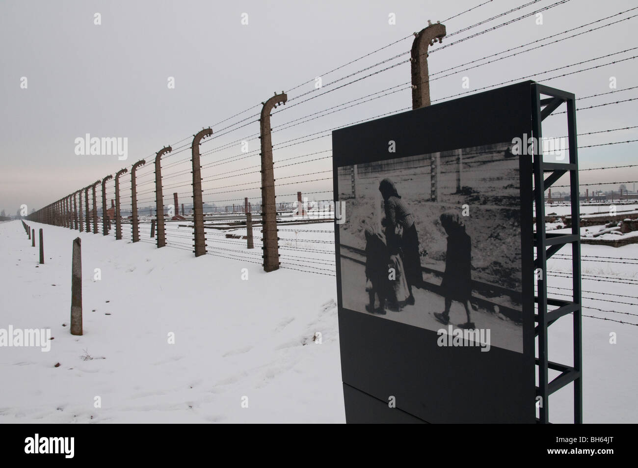 photograph taken by nazis at birkenau concentration camp - Stock Image
