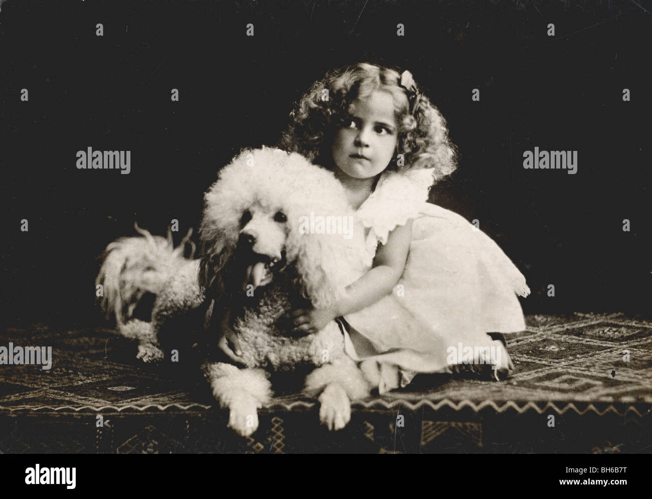 Lookalike Little Girl & Poodle Dog - Stock Image