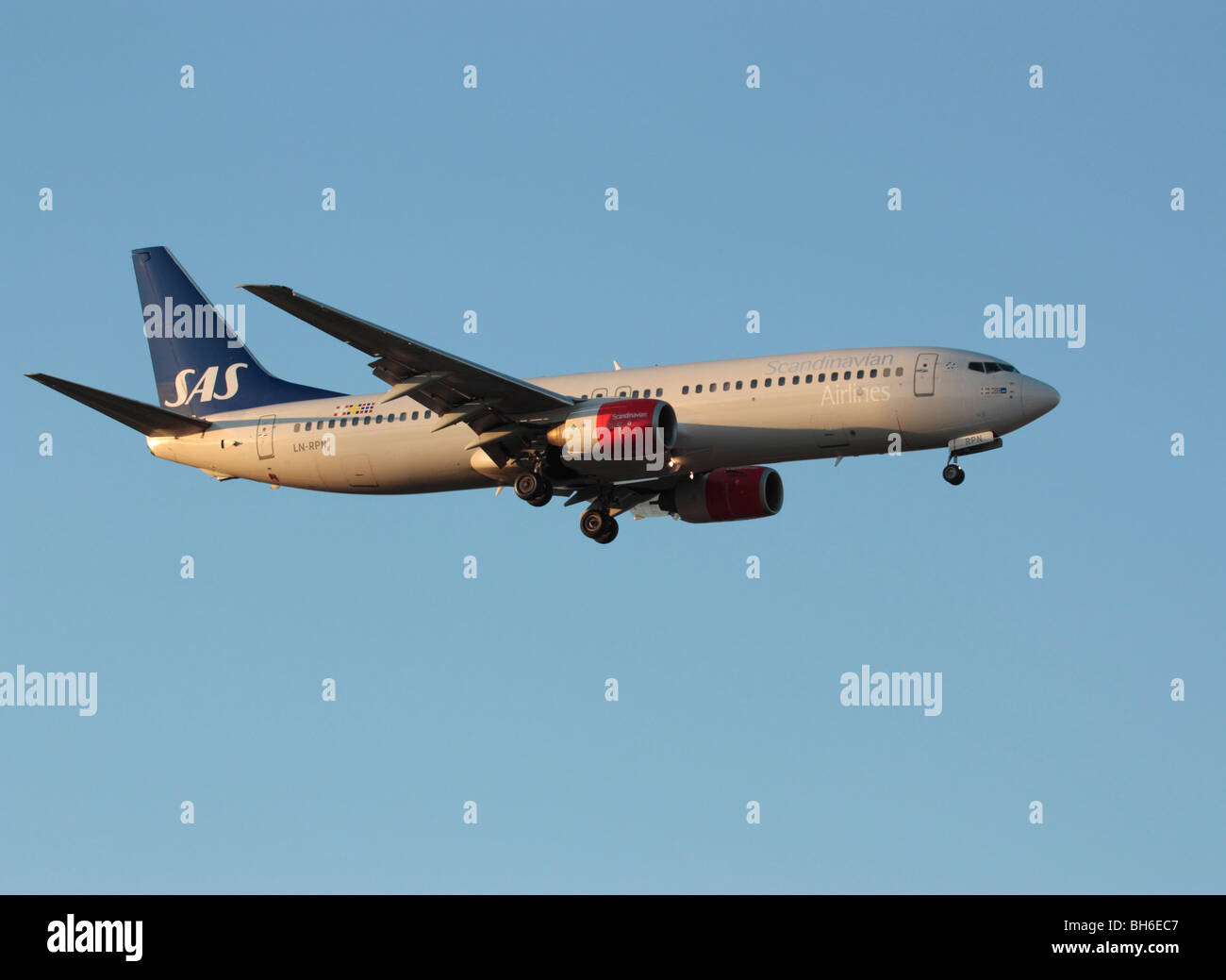 SAS Boeing 737-800 on arrival at sunset - Stock Image