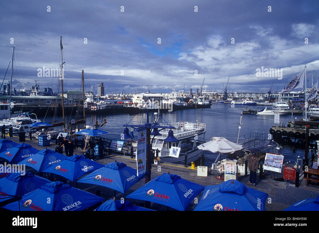 Cape Town marina, South Africa - Stock Image