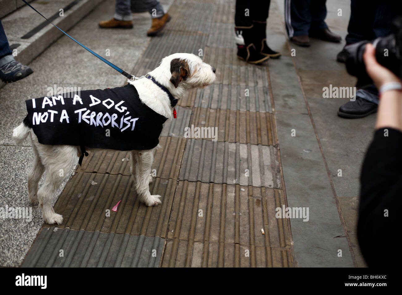 I am a photographer not a terrorist mass photo gathering at Trafalgar Square, London  23 Jan 2010 - Stock Image