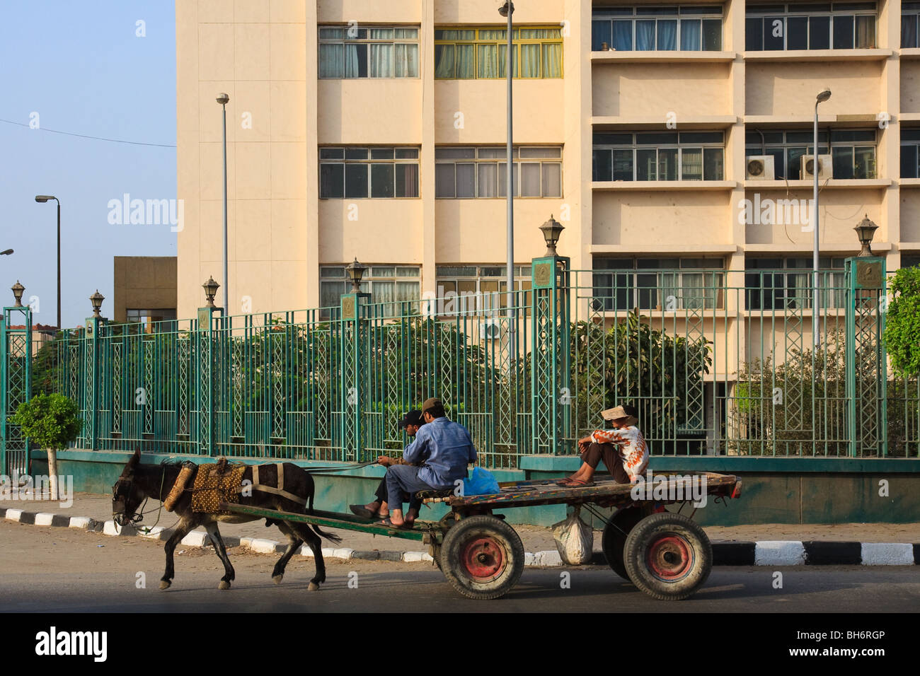 Africa Carts Egypt Street Transport Zagazig - Stock Image
