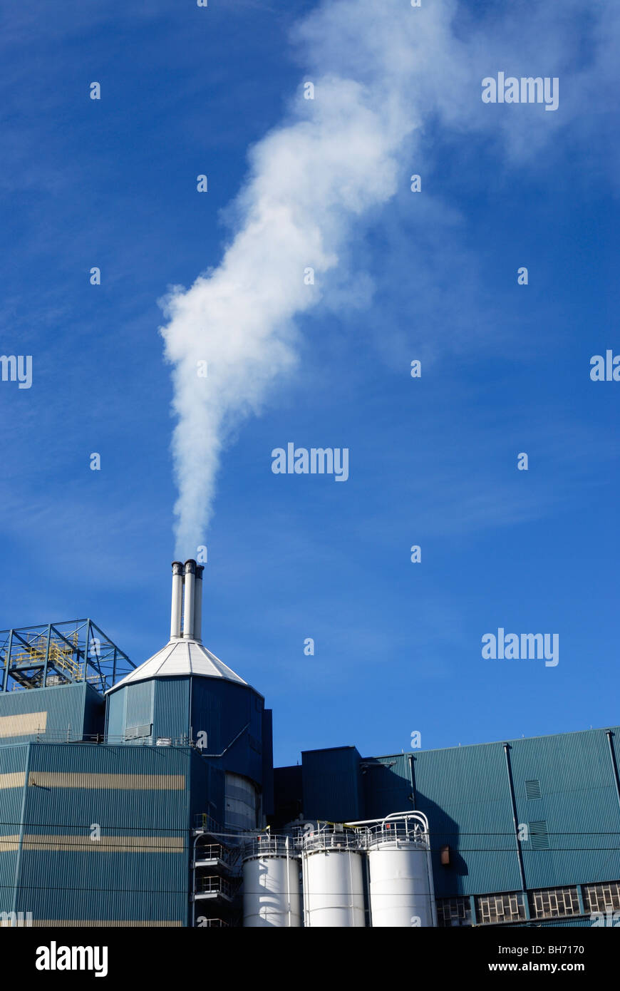 Steam venting into the atmosphere from Unilevers chemical works in Warrington which produces washing powder and - Stock Image